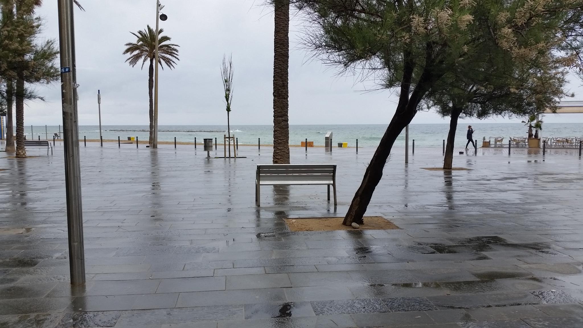 Paseo marítimo de Barceloneta