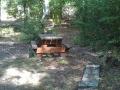 Forêt dom. de Verzy