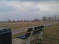 Rijndijk
