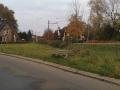 Molenparkweg