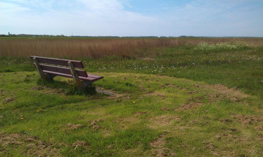 Zaandammerdijk