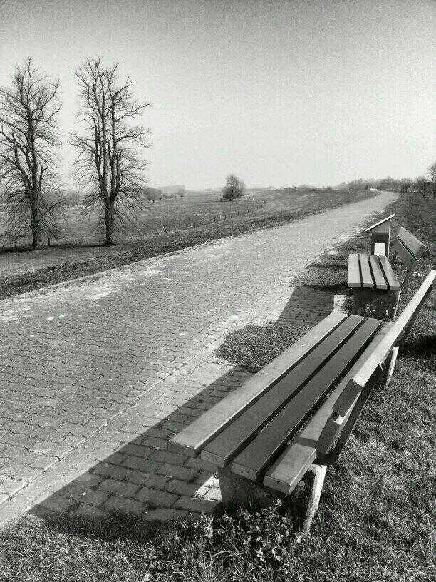 Griethauser Altrhein