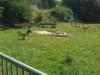 Im Heidfeld