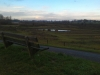 Lage Steenweg (De Hoven)