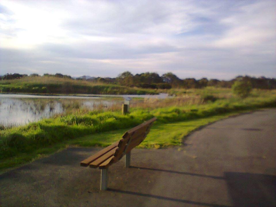 Macalister wetland