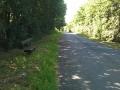Roseberry Lane