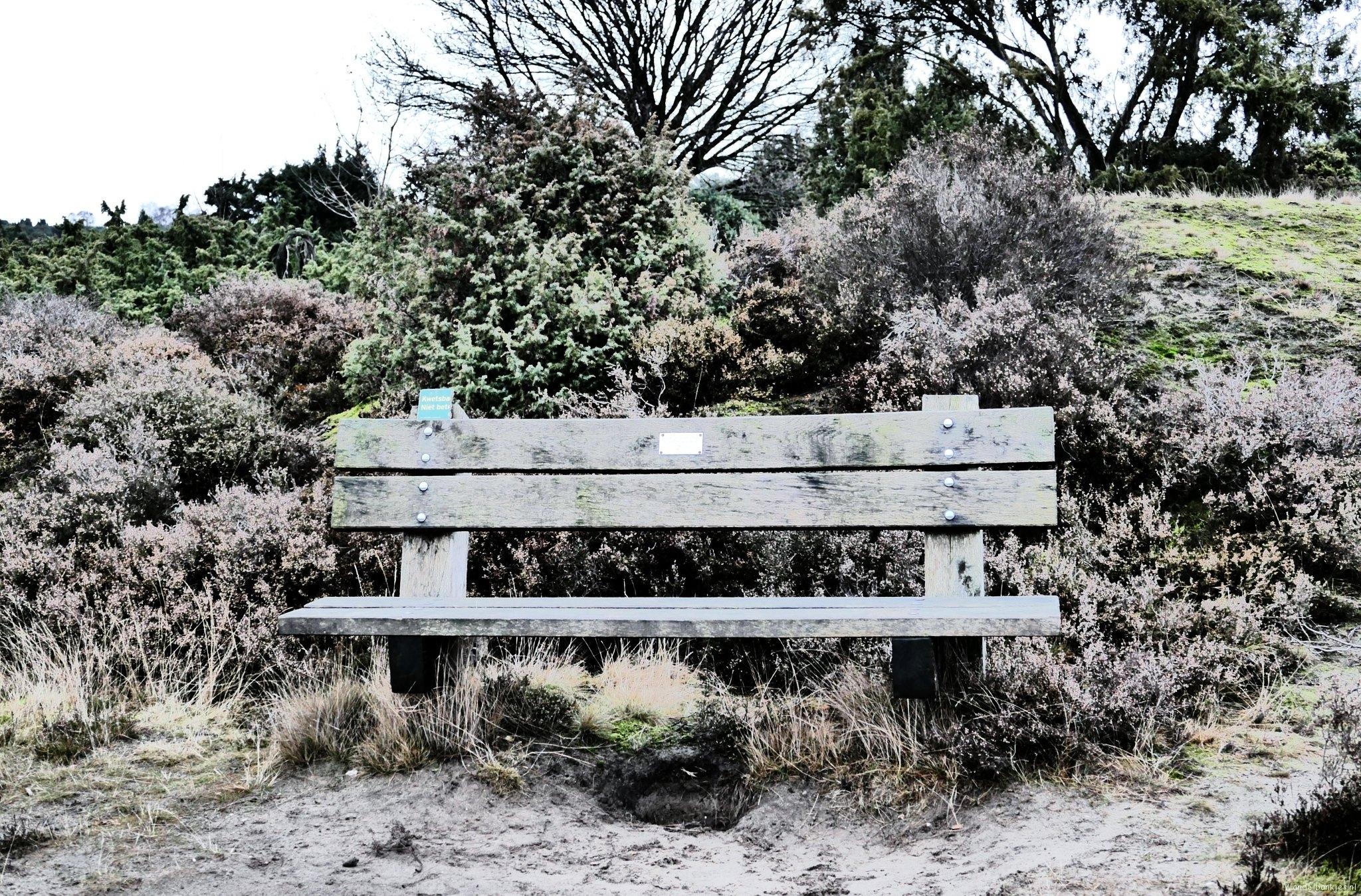 rt-umoja4-wandelbankjes-op-de-lemelerberg-special-effects-natuurfotografie-natuur-httpst-comdcinazo85