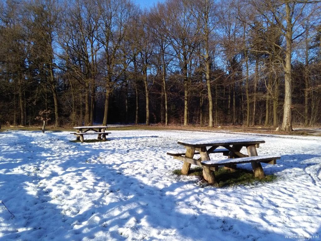 rt-jelskerdai-wandel_nl-wandelbankjespicknickbanken-langs-het-drenthepad-boswachterij-exloo-bij-het-vennetje-httpst-couzzmknllwu