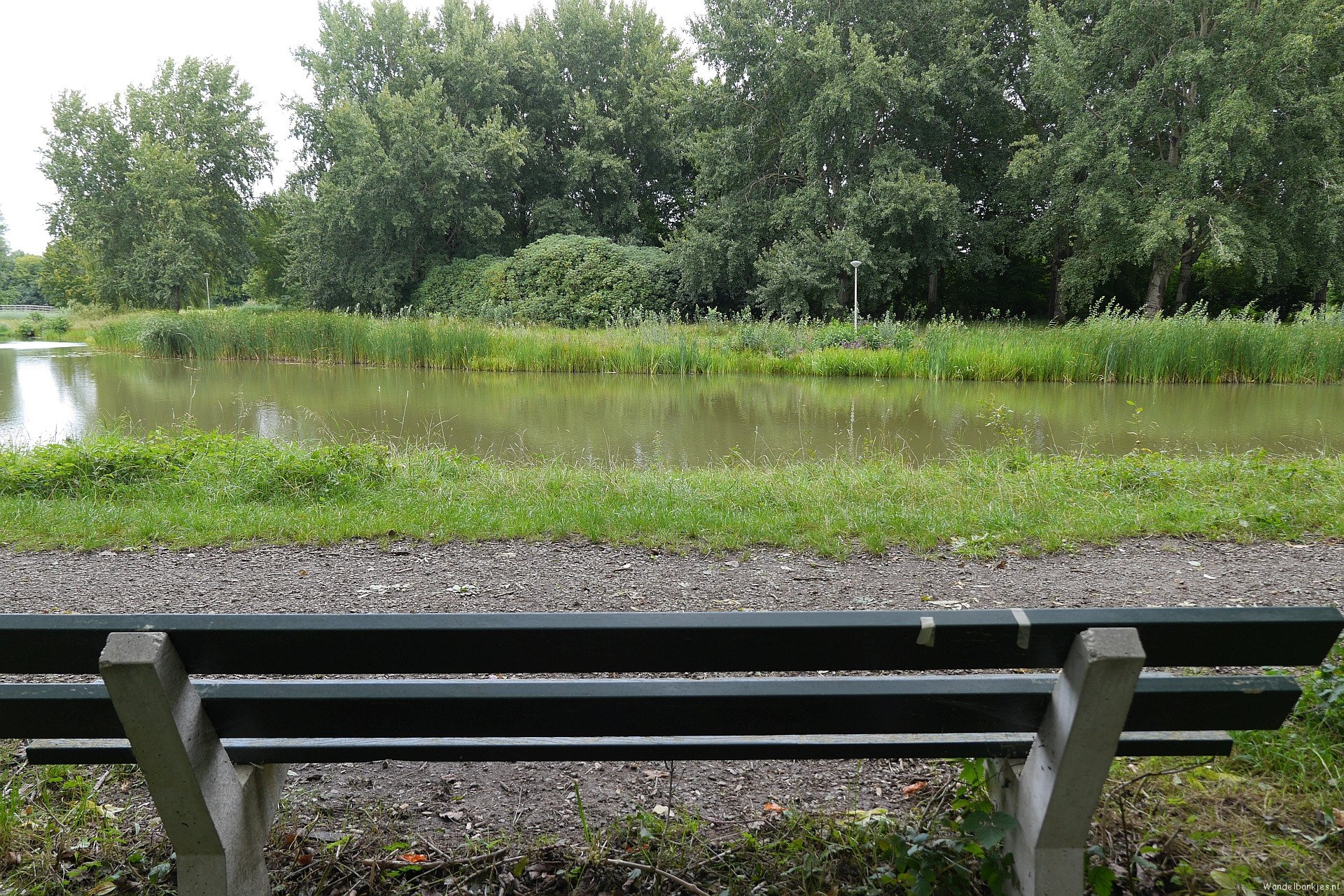 rt-arthurskm-a-lanes-singular-here-in-park-city-dike-in-nijmegen-just-a-beautiful-view-over-a-pond-httpst-co9