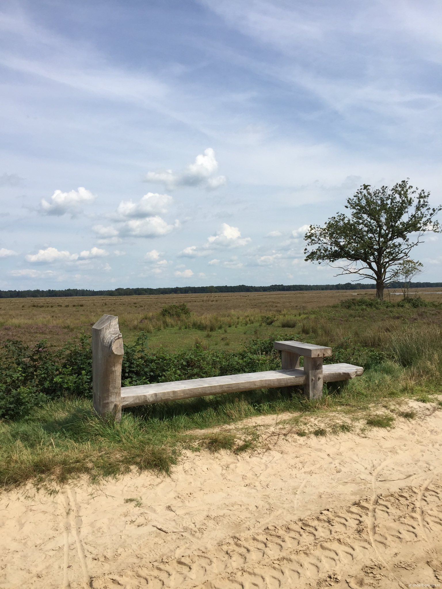 rt-gertientje-lovely-walking-on-dwingelderveld-come-me-again-beautiful-bench-against-walkersbenches-walking benches-httpst-cobqho
