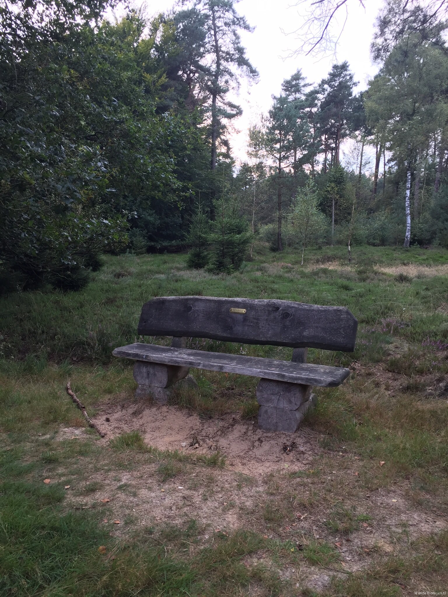 rt-gertientje-leuk-bank-spotted-in-the-cape-forest-to-doorn-walk-benches-walkersbenches-httpst-cogwt4axnnid
