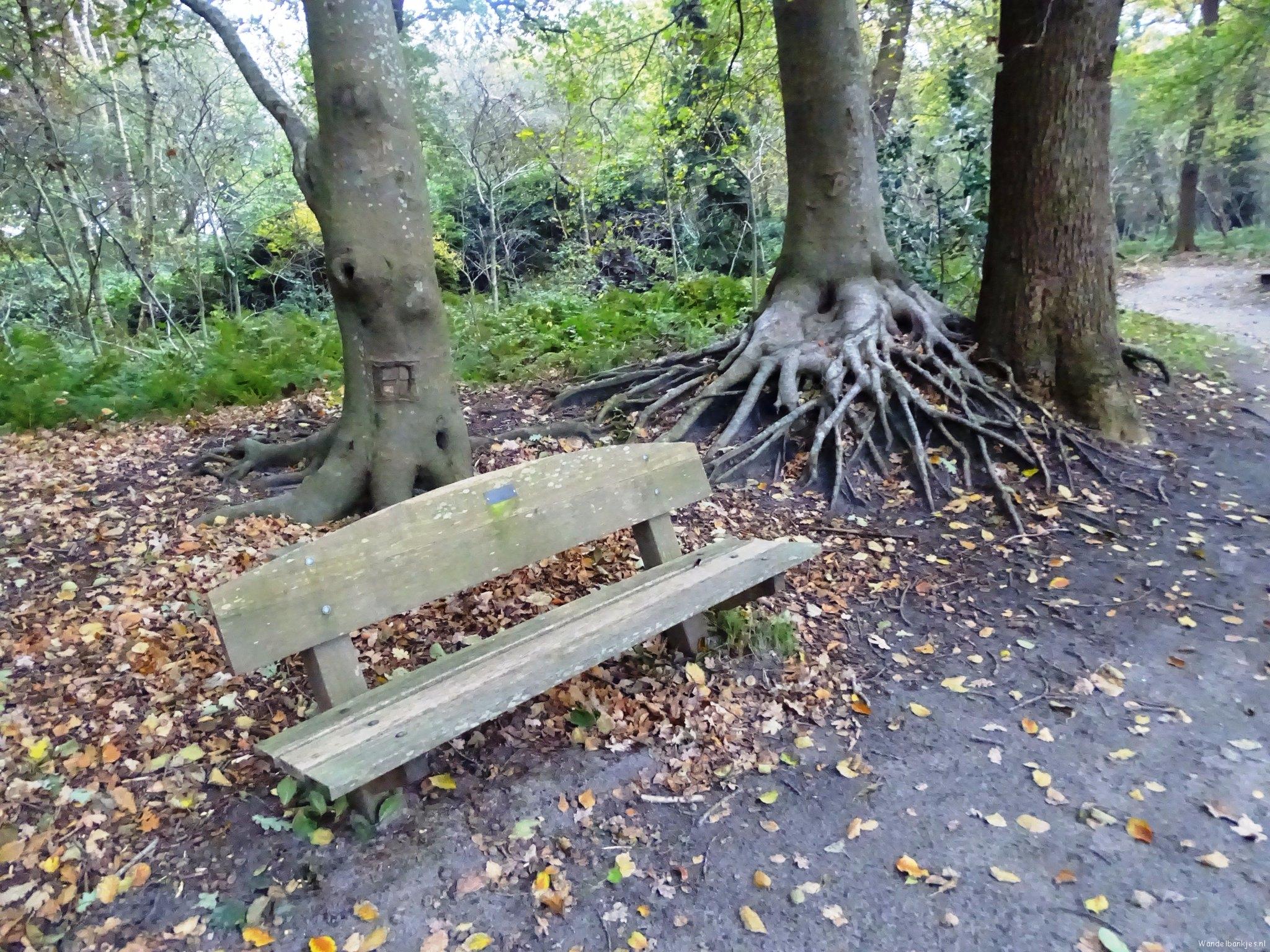 rt-jenjdevries-walking-benches-bench-in-fraeylemapark-slochteren-httpst-colokflewk2p