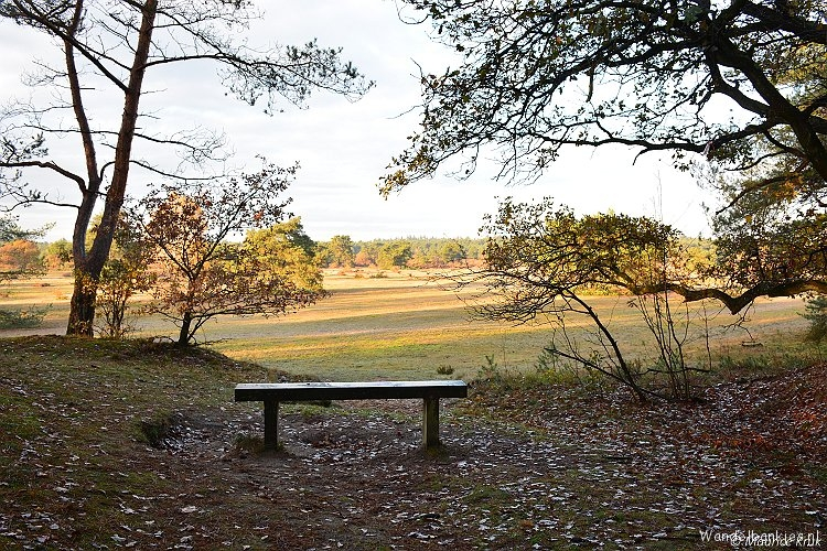 rt-mauricstool-hiking-benches-with-view-the-zanding-otterlo-gld-httpst-cofzi7ymqwpt