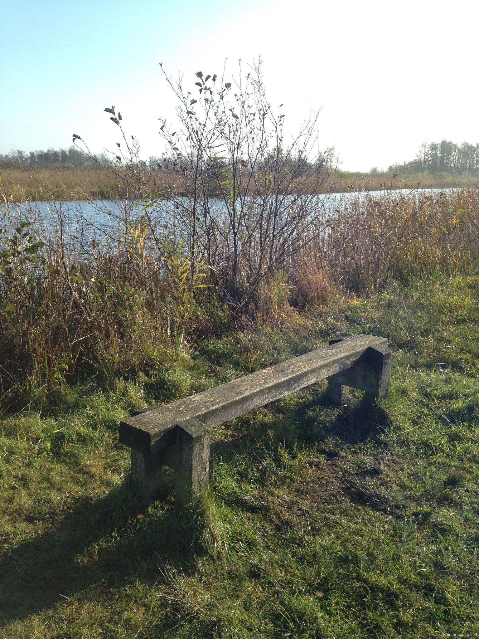 rt-martenvdmolen-walk-bench-in-the-wieden-at-wanneperveen-walkways-httpst-cooql3iyvcti