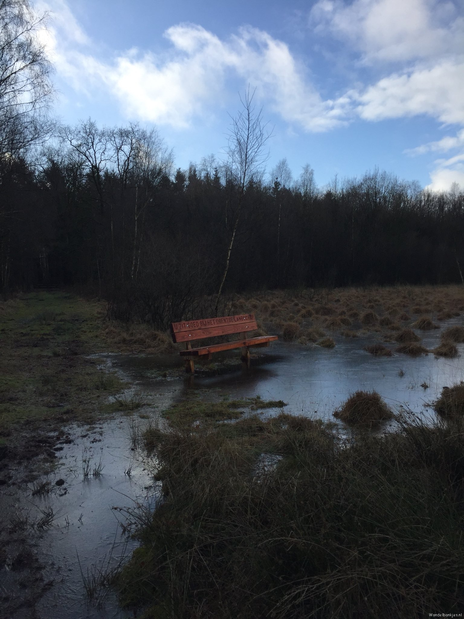 rt-gertientje-er-staat-a-nice-new-bench-on-the-fox-mountain-but-it-is-a-little-wet-walkersbenches-walkers-https-tc