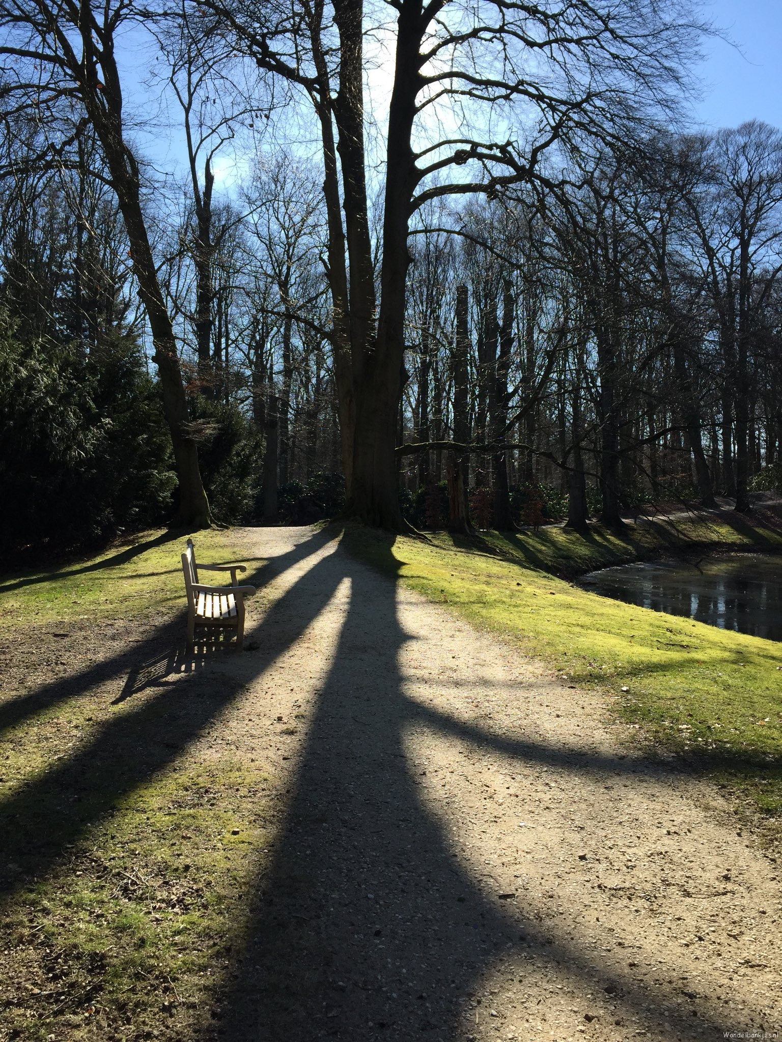 rt-westalet-green-changing-baarn2-walking-bar-walking-walking benches-beautiful-varied-route-https-t-co-z3tdclefa6