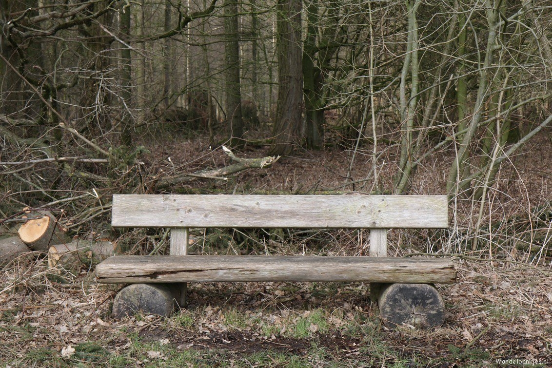 rt-johan_1978-walking-benches-here-a-bench-from-the-kadulerbos-https-t-co-uvsrowcvra
