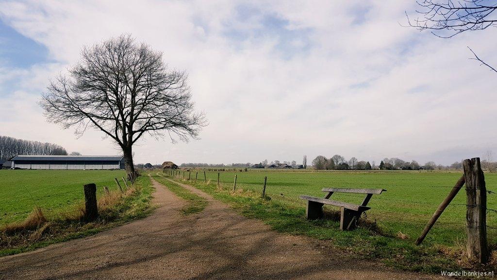 rt-wolfwalkplan-along-the-randerpad-at-diepenveen-walkingcabins-https-t-co-udics0zqst