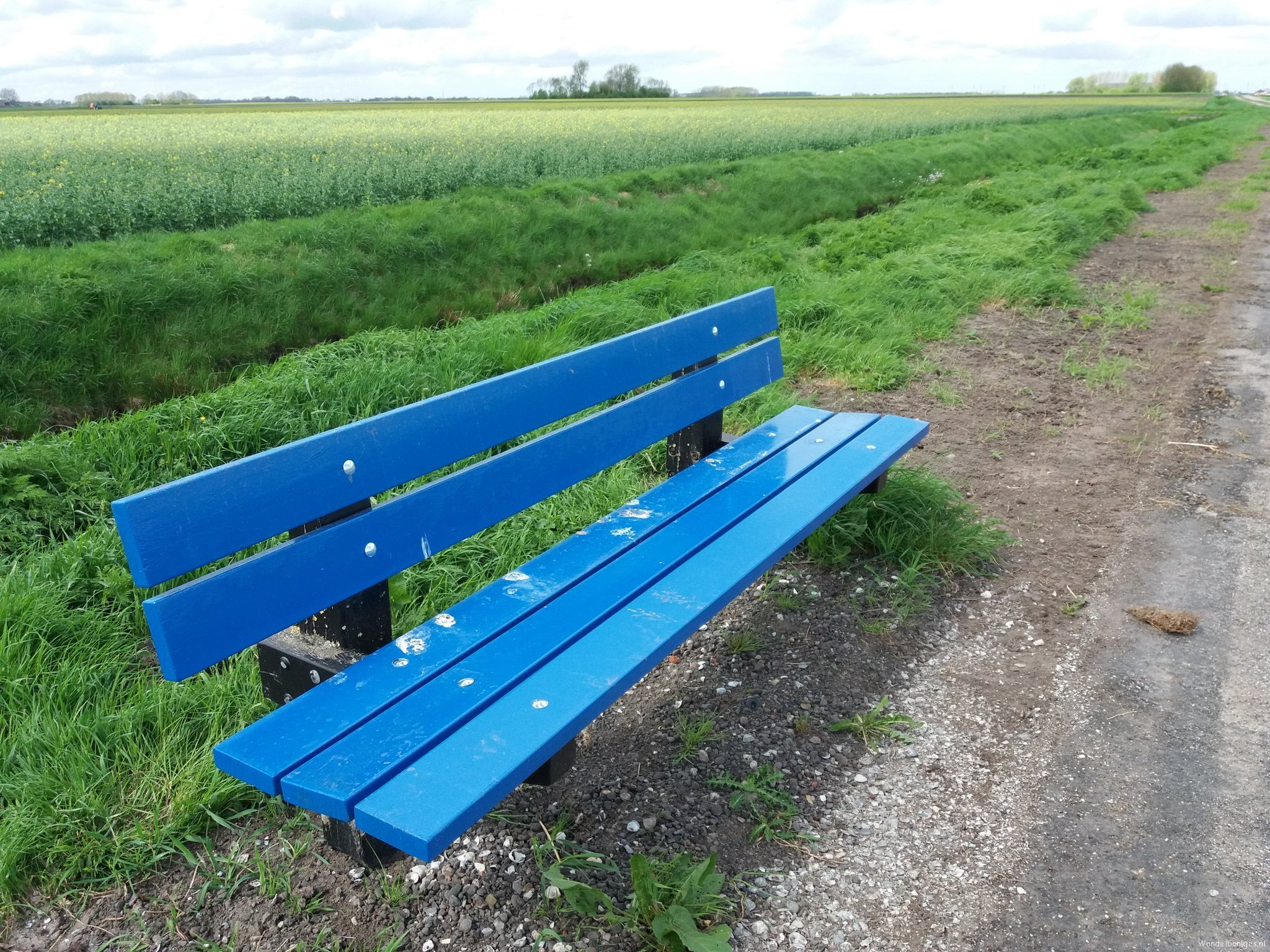 rt-walking with war-nieuwlandseweg-midwoldaoldambtoost-groningenwith-budding-rapeseed-in-the-background-walking benches-https-tc