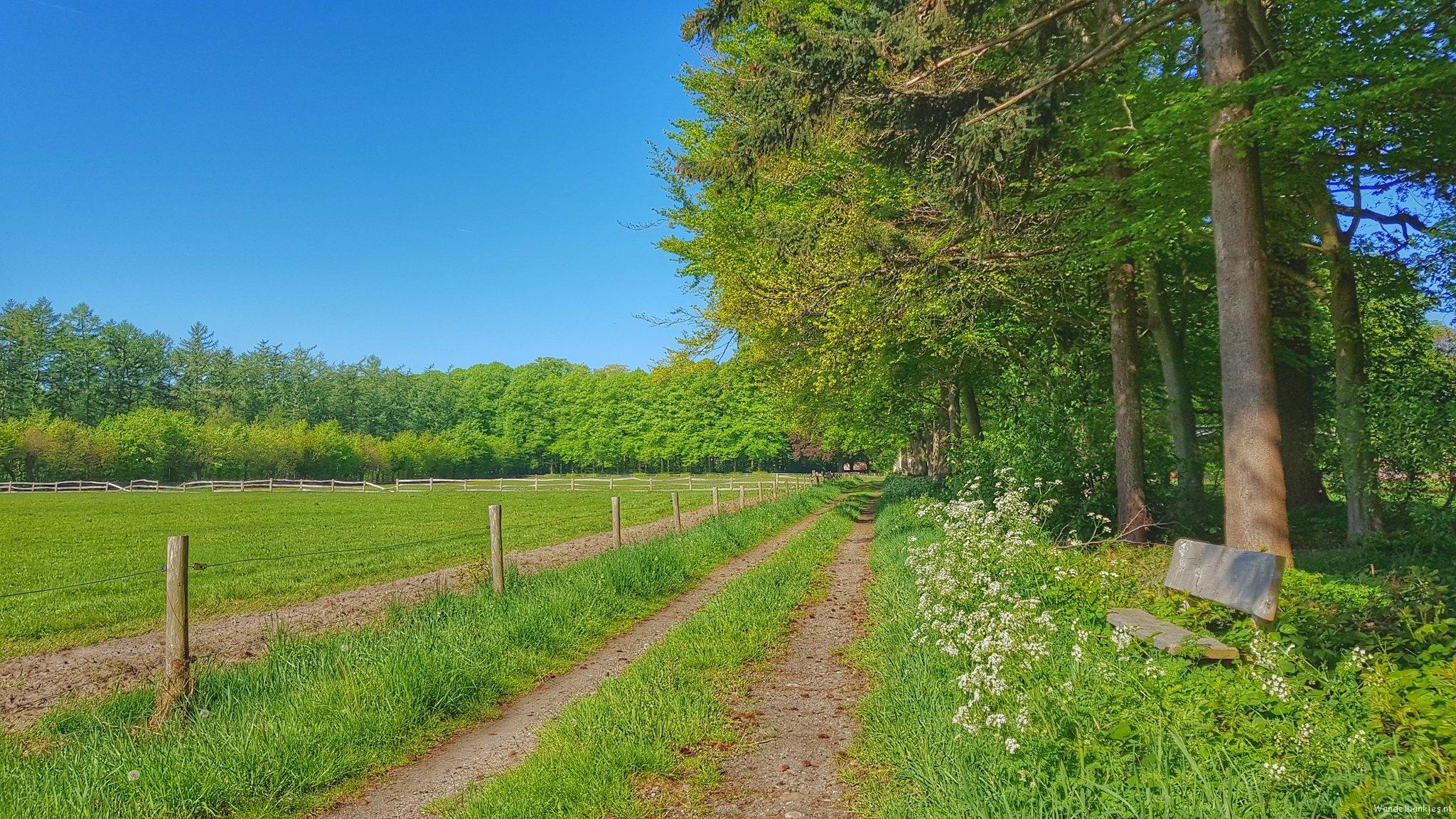 rt-wolfswandelplan-den-alerdinck-at-heino-hiking-benches-https-t-co-rvi5qposfz