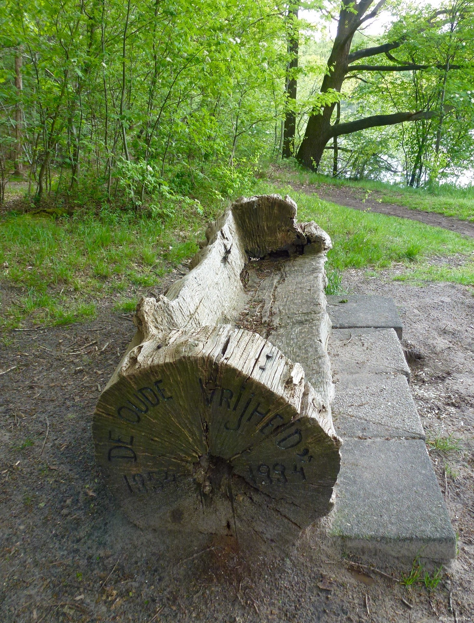 rt-adriana57-beautiful-made-couch-seen-in-the-woods-at-ninsel-sintoedenrode-voetjes-https-t-co-sro5kit1kk