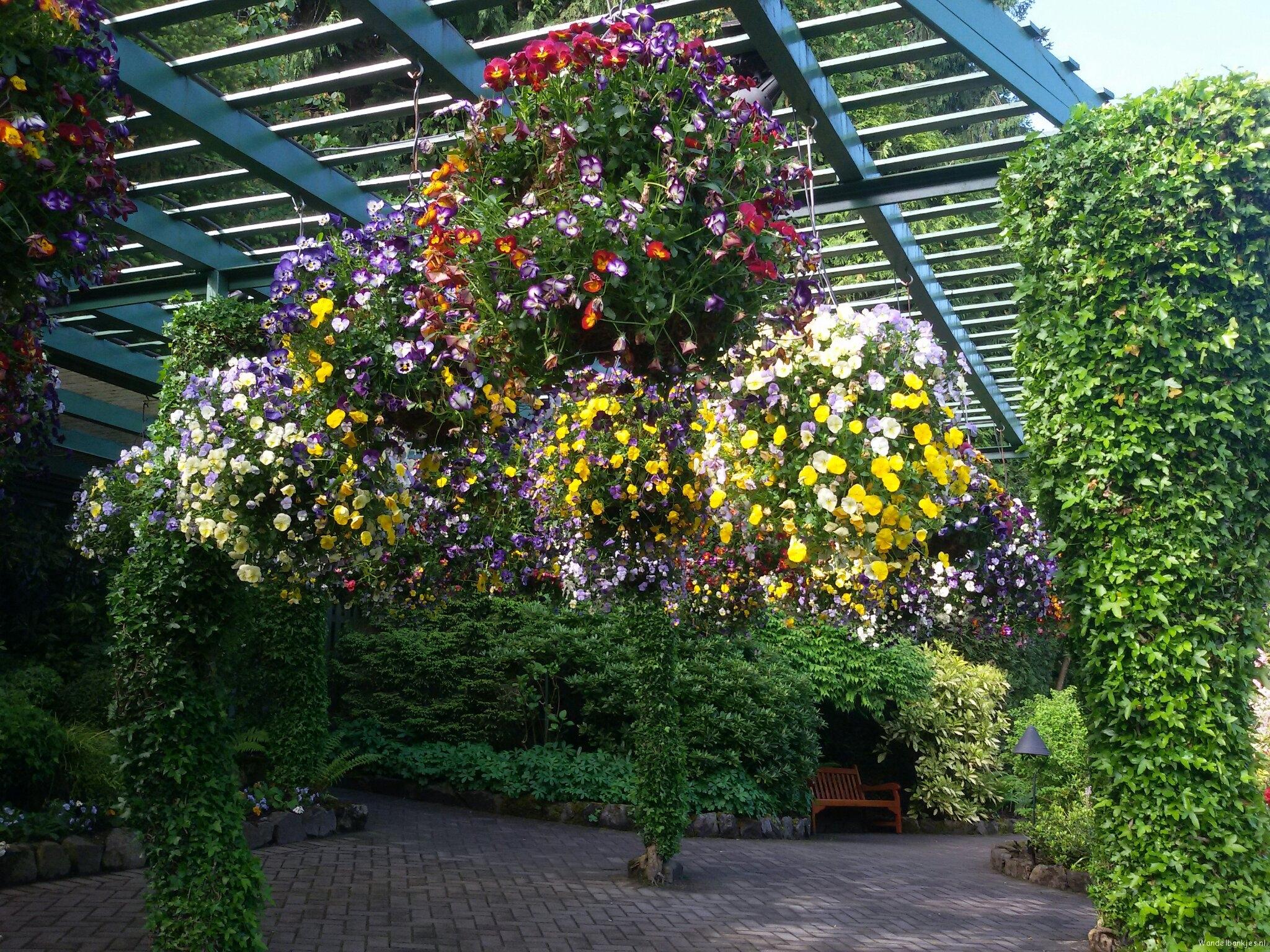 rt-mvandm-wandelbankjes-walkersbenches-beautiful-butchart-gardens-vancouver-island-canada-https-t-co-aqocijv7b6