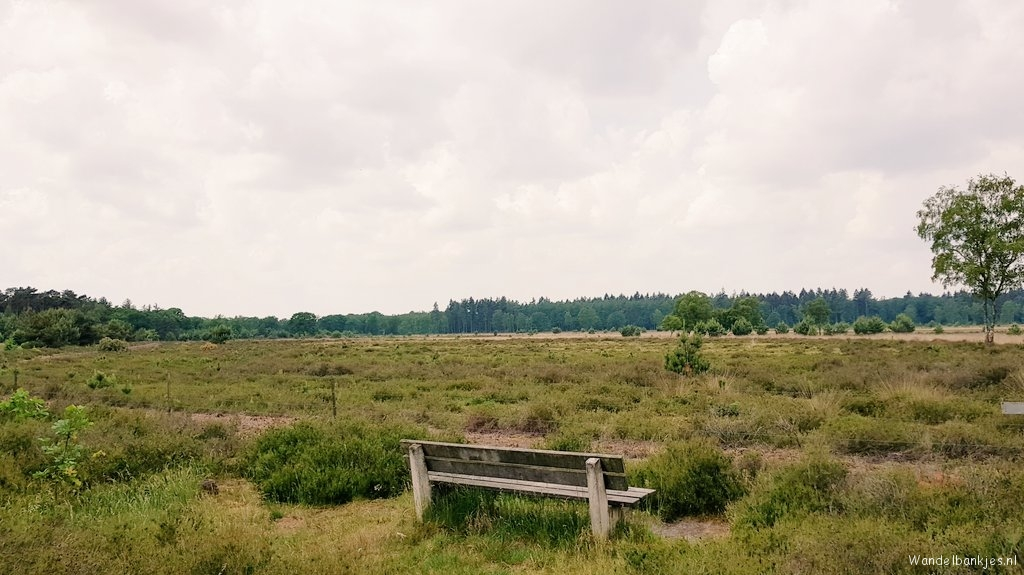 rt-wolfswanding-large-heather-south-of-strijp-walking-benches-https-t-co-xaitllqd06