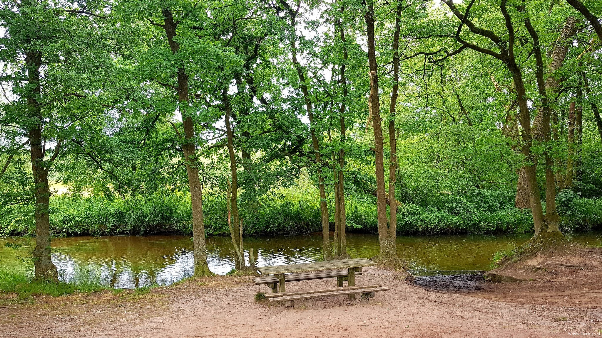 rt-wolfswandelplan-in-the-neighborhood-of-the-dommel-and-the-malpie-between-valkenswaard-and-borkel-walking-benches-https-t-co-vsylu9mwnc