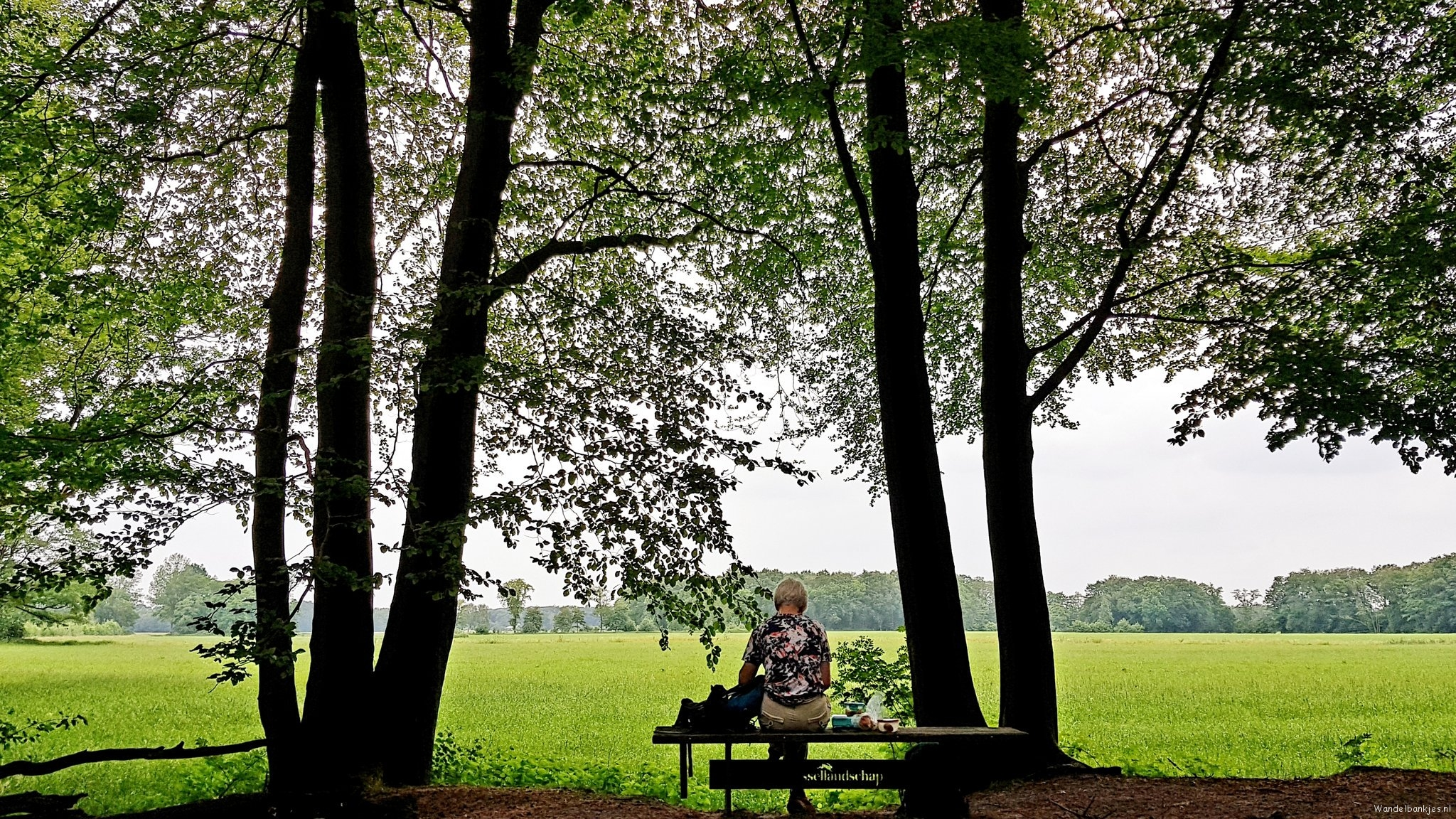 rt-wolfswandelplan-aan-de-rand-van-landgoed-de-kranenkamp-surroundings-diepenveen-walking-benches-https-t-co-xfve710ogi