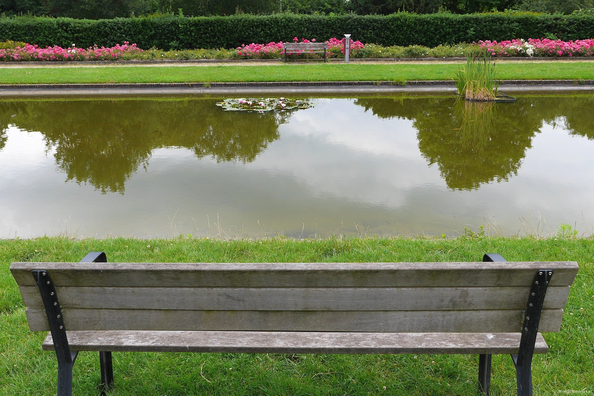 rt-arthurskm-pond-in-the-rosarium-stadspark-de-goffert-nijmegen-walkersbenches-walking-benches-https-t-co-srqhhdmocj
