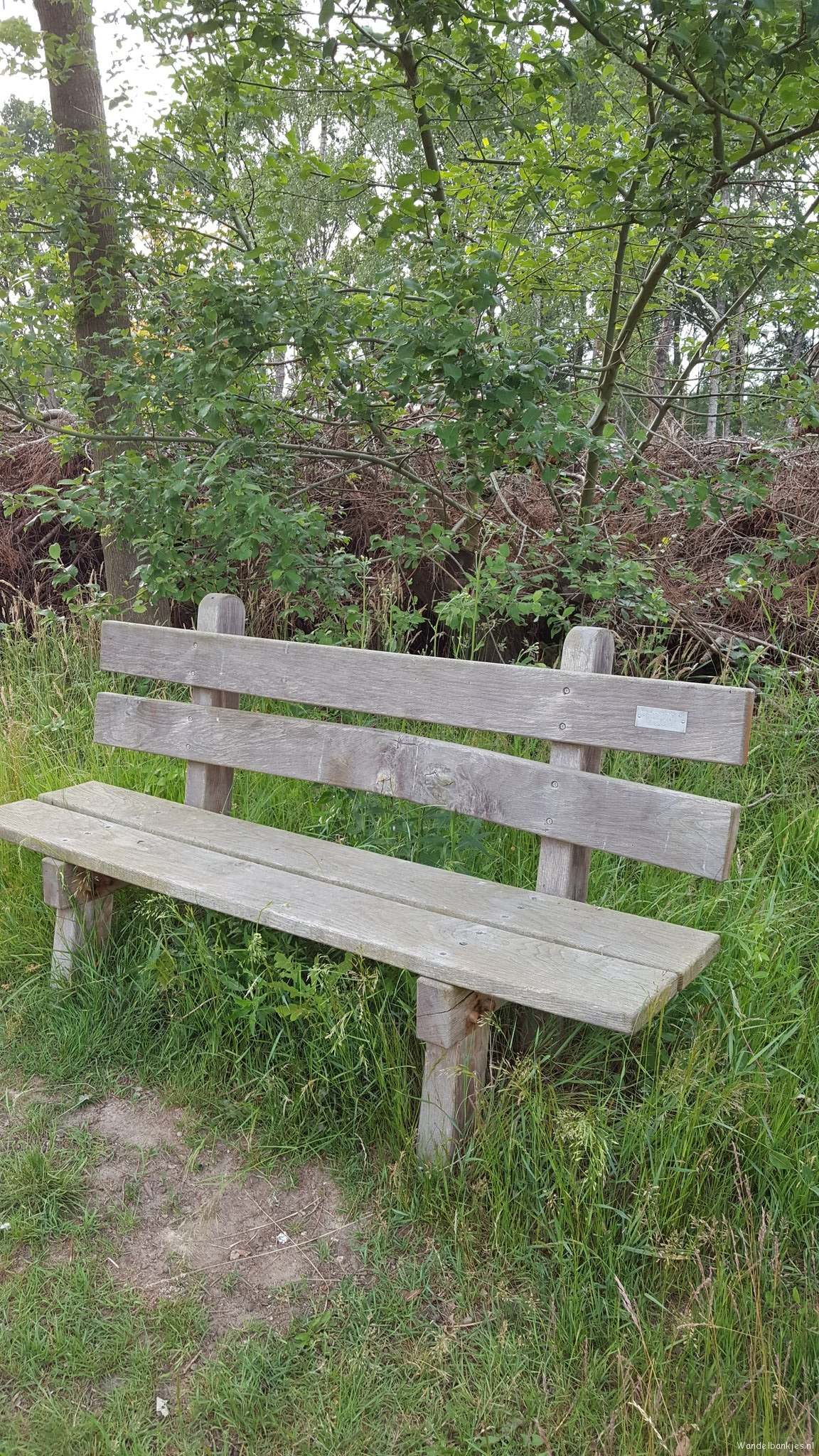 rt-simmajalis-walking-walking-benches-highhexel-water-winning-area-around-beautiful-nature-https-t-co-et5kv1jqwh