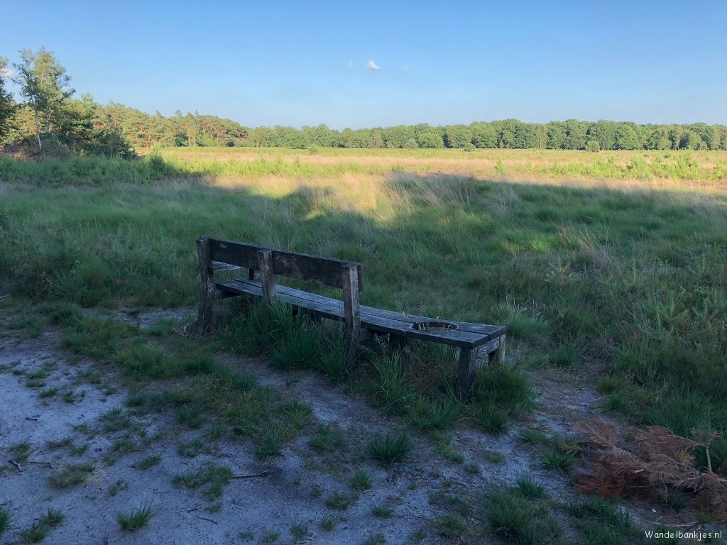 rt-gertientje-this-bench-spotted-in-the-forest-area-at-four-wood-walkersbenches-walking-velvet-https-t-co-tx68ez3q91