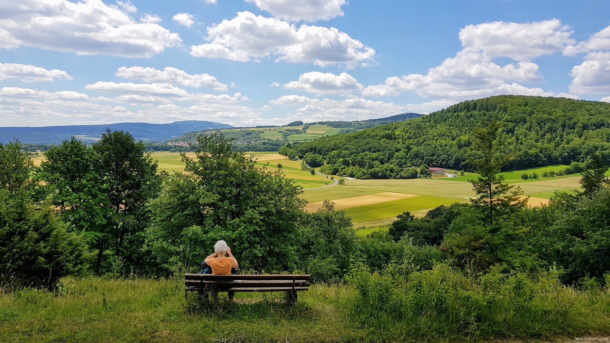 rt-wolfswandelplan-bayerische-rhon-bij-oberelsbach-walking-benches-https-t-co-hucy5rdgpk