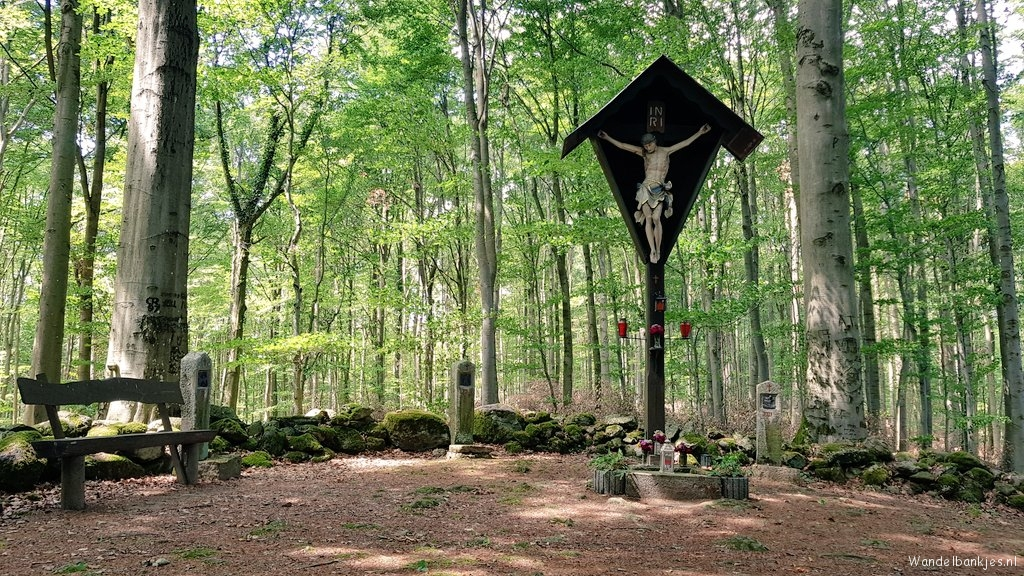 rt-wolf-walking-plan-hohes-kreuz-in-de-beech forests-around-fladungen-in-de-rhon-benches-https-t-co-0jybkry9gx