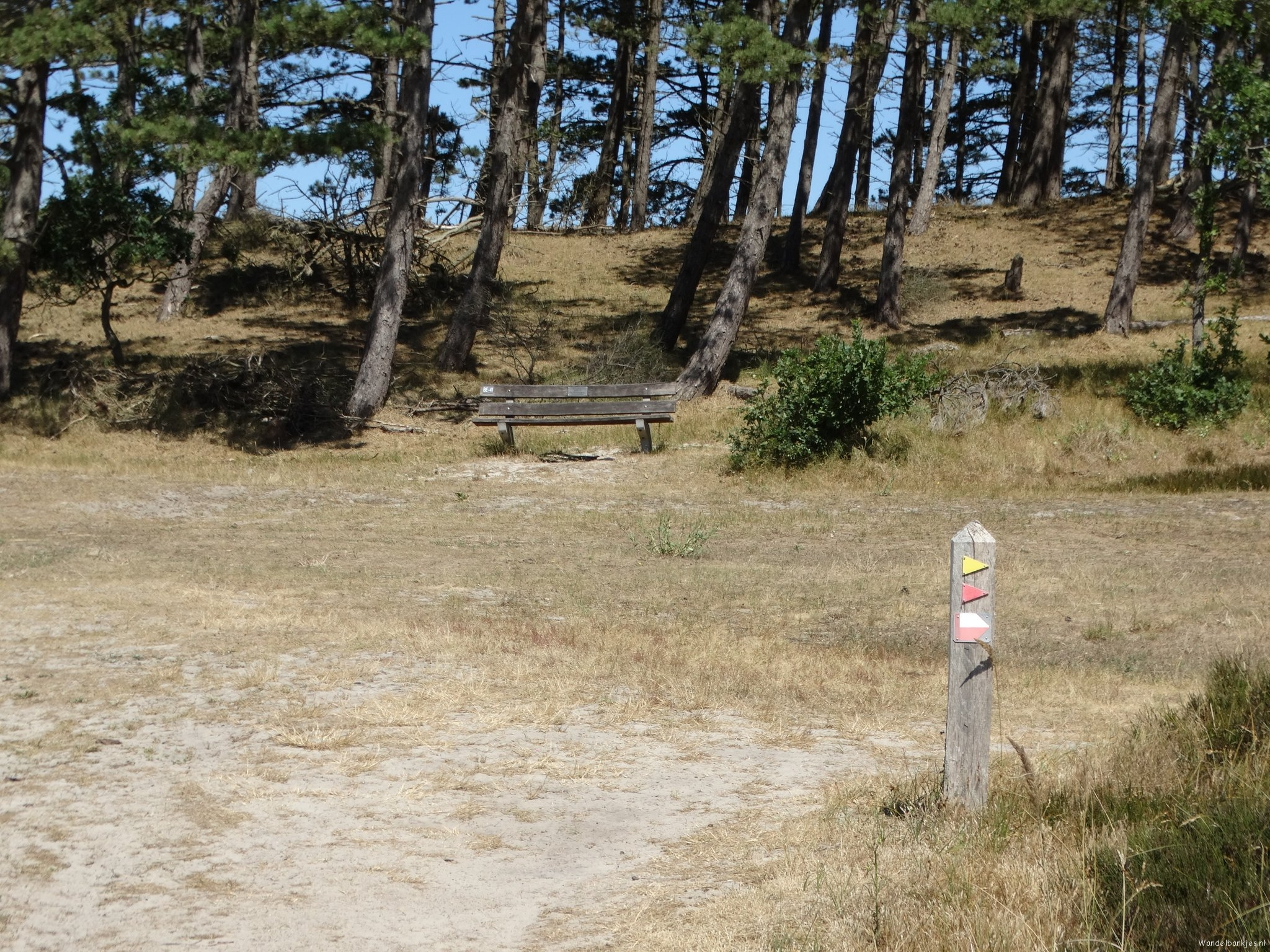rt-dujo070-walking-benches-in-the-mountains-and-schoorlse-dunes-on-the-law-dutch-coastal path-part-2-https-t-co-uset987jyq