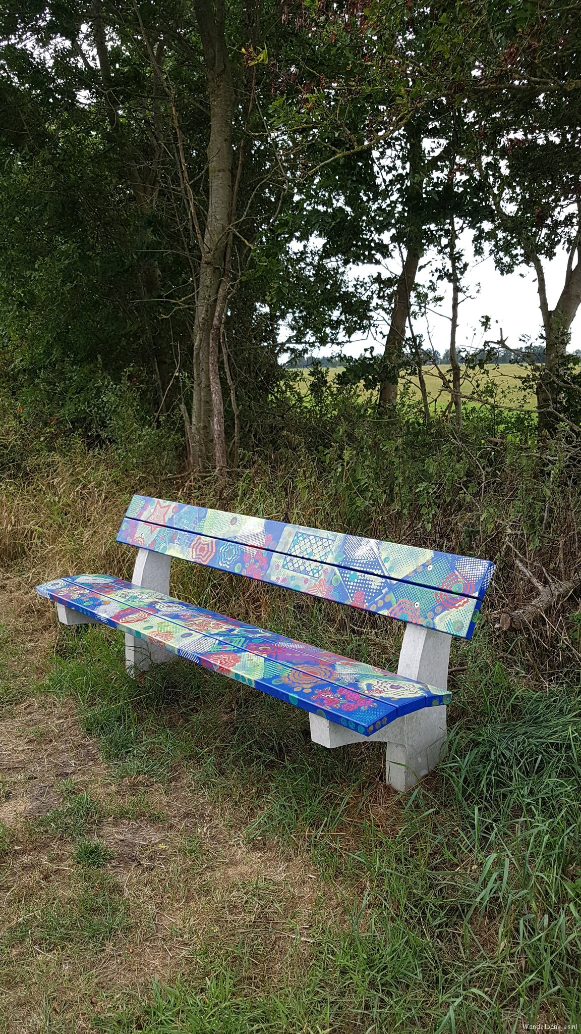 rt-gertdewit-a-beautiful-painted-bank-environment-earnewald-walking-benches-https-t-co-srndoam6bd