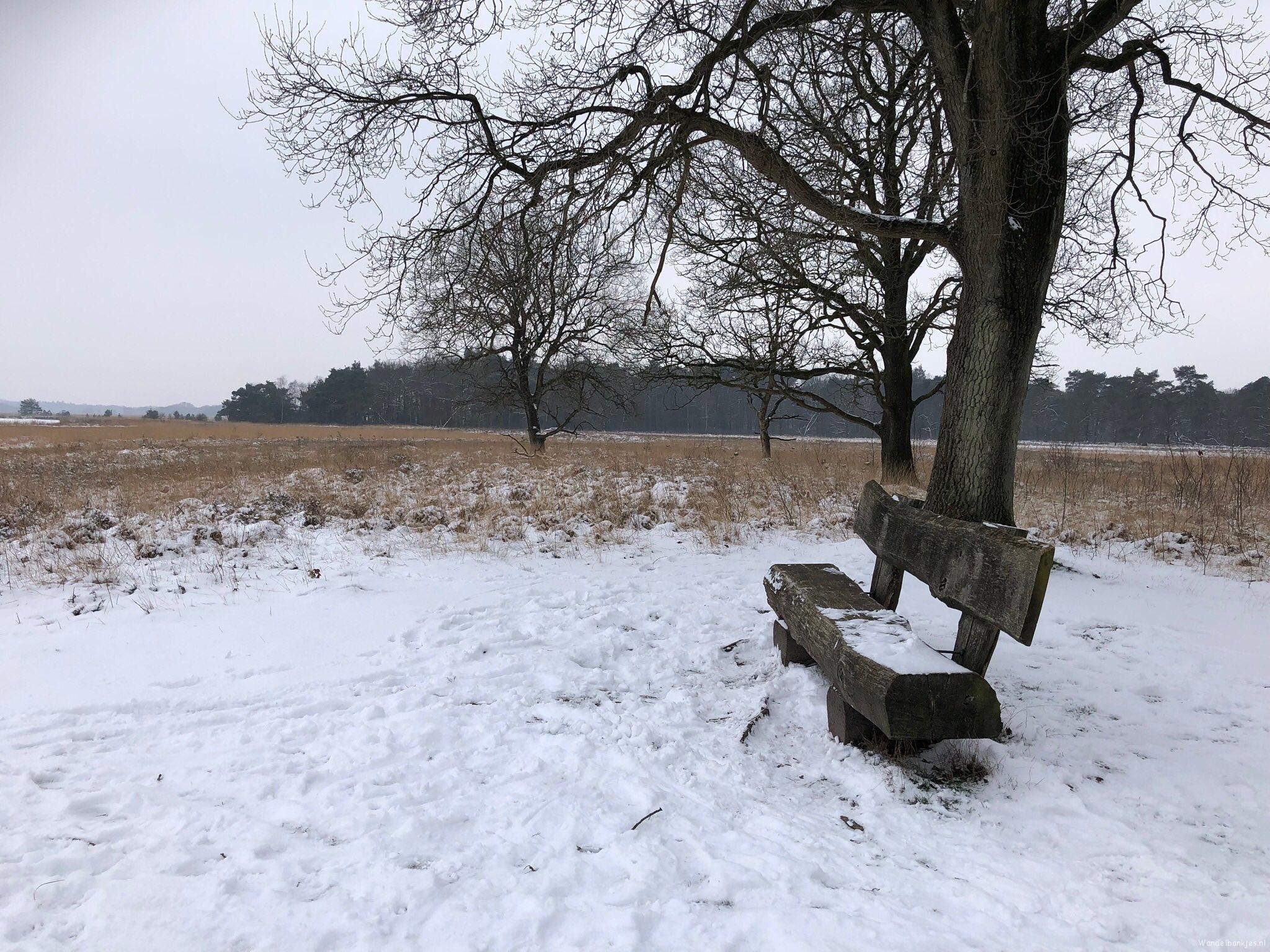 rt-gertientje-op-een-prachtige-plek-op-het-dwingelderveld-staat-dit-mooie-wandelbankje-walkersbenches-wandelbankjes-https-t-co-xylxa