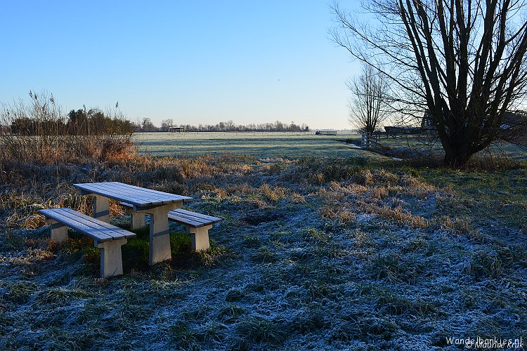 rt-mauric-stool-walking-benches-1-groeneweg-stolwijk-zh-2-the-hempjackers-stolwijk-zh-https-t-co-hpjhvegloo