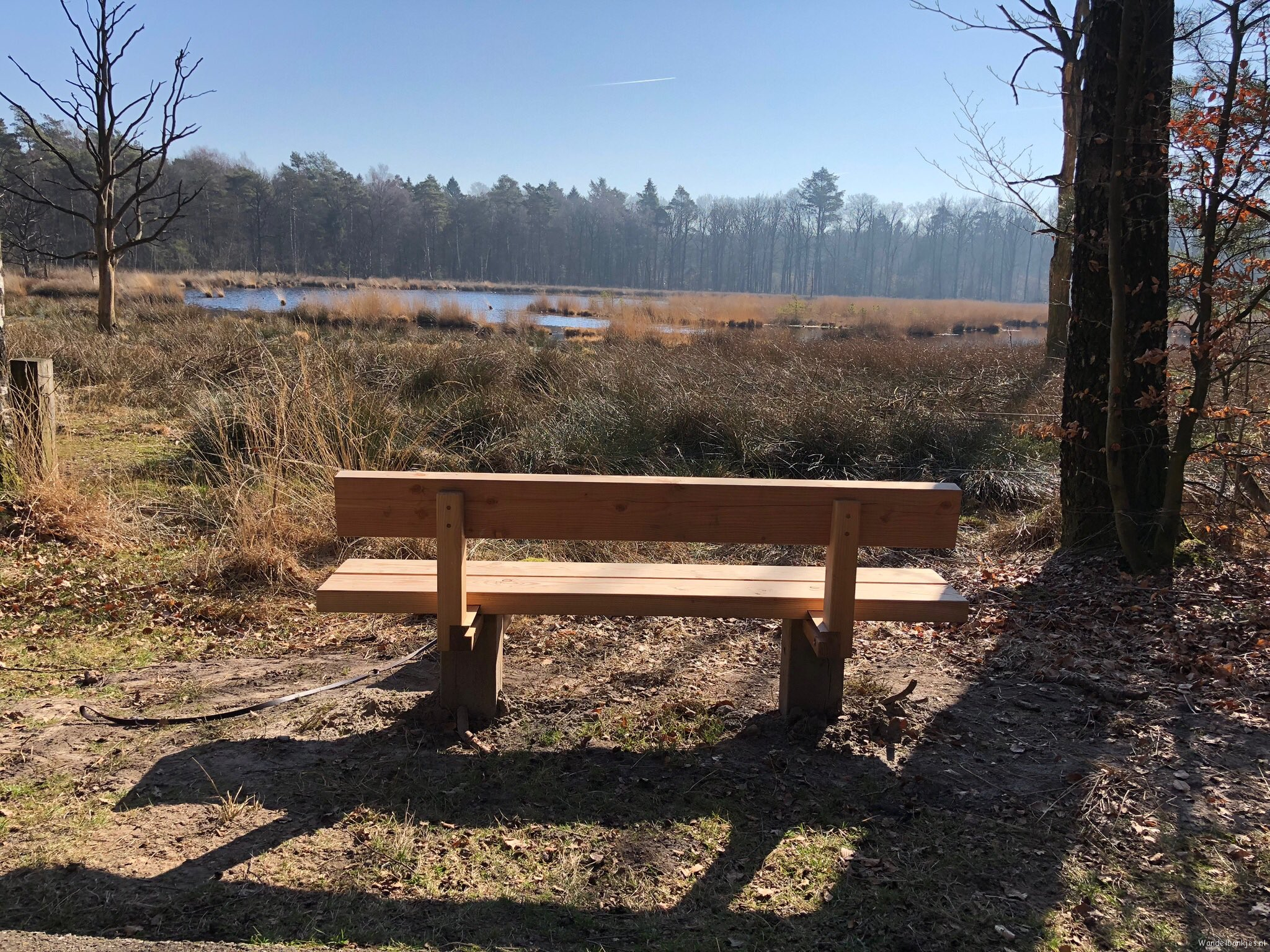 rt-gertientje-on-a-beautiful-place-in-forest-gees-a-bench-spotted-walking-benches-walkersbenches-https-t-co-npkcx2yif7