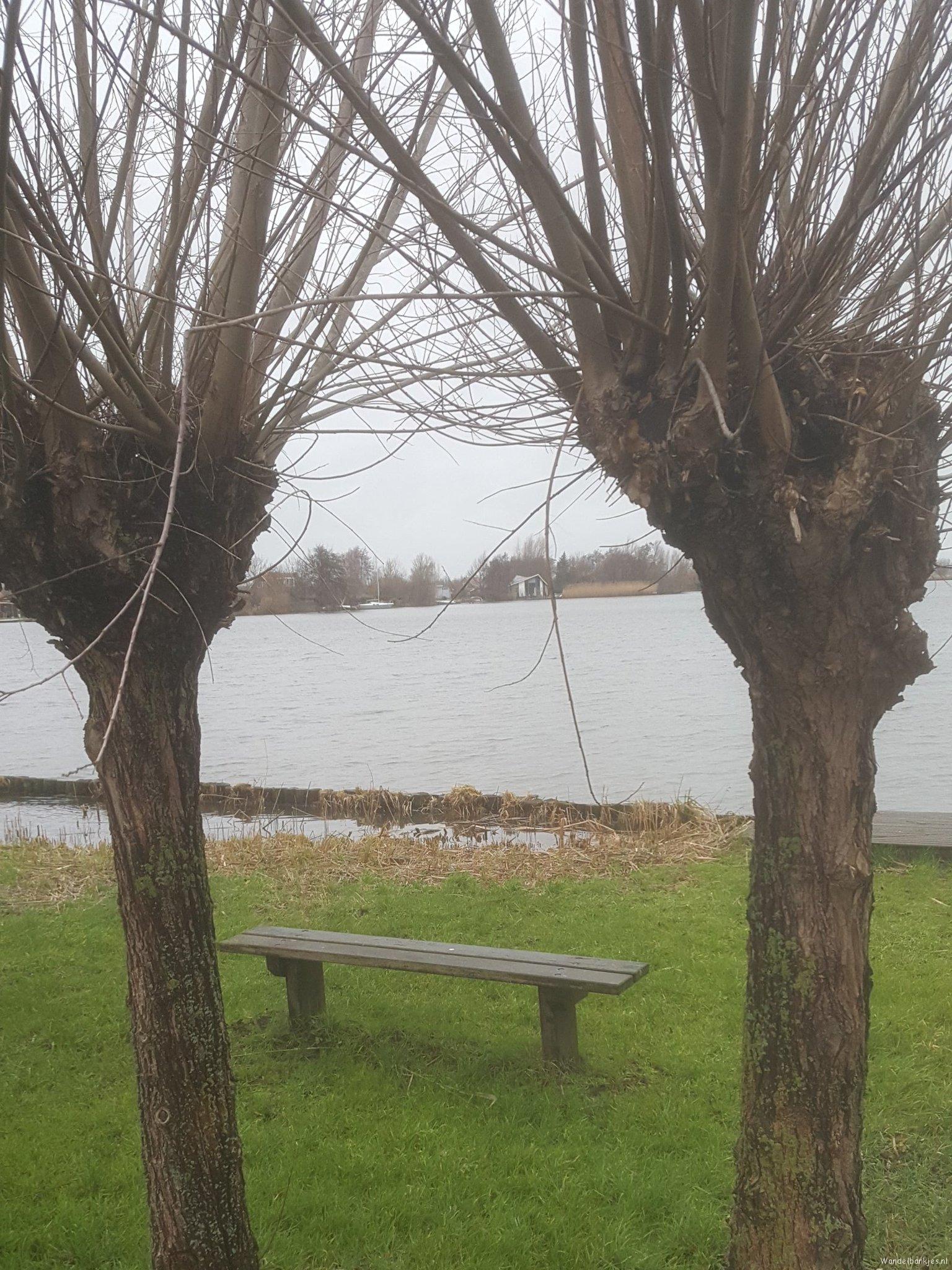 rt-veiligoppad-wandelbankjes-aan-hortemansdijk-reeuwijk-knotwilgen-groenehart-https-t-co-q40a1pbyfy