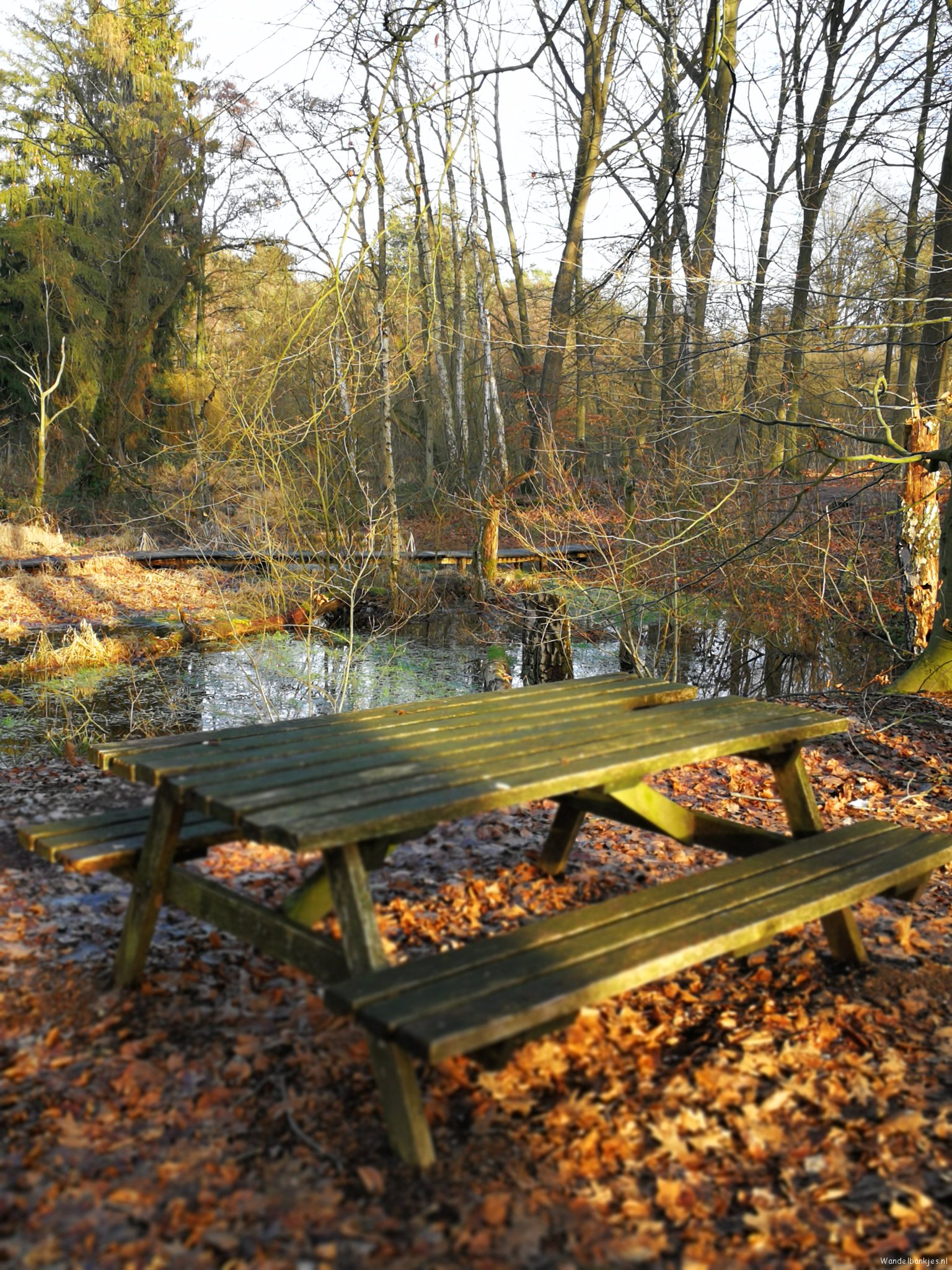 rt-walking pleasure59-picnic table-along-the-swalm-in-swalms-this-is-sun-lovely-place-in-a-beautiful-environment-walking benches-http