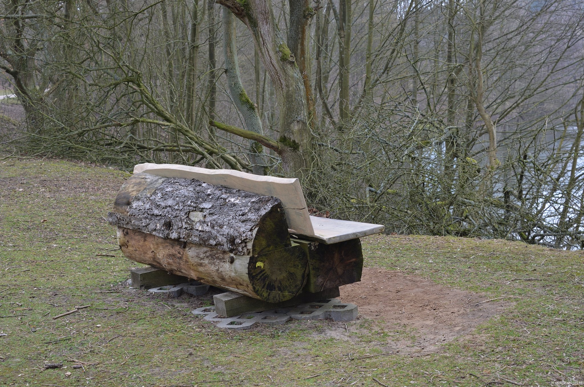 rt-naturallyoss-relaxed-birds-spotting-from-this-bench-in-the-amsterdam-waterleidingduinen-walking benches-https-t-co-eqamjwqme7
