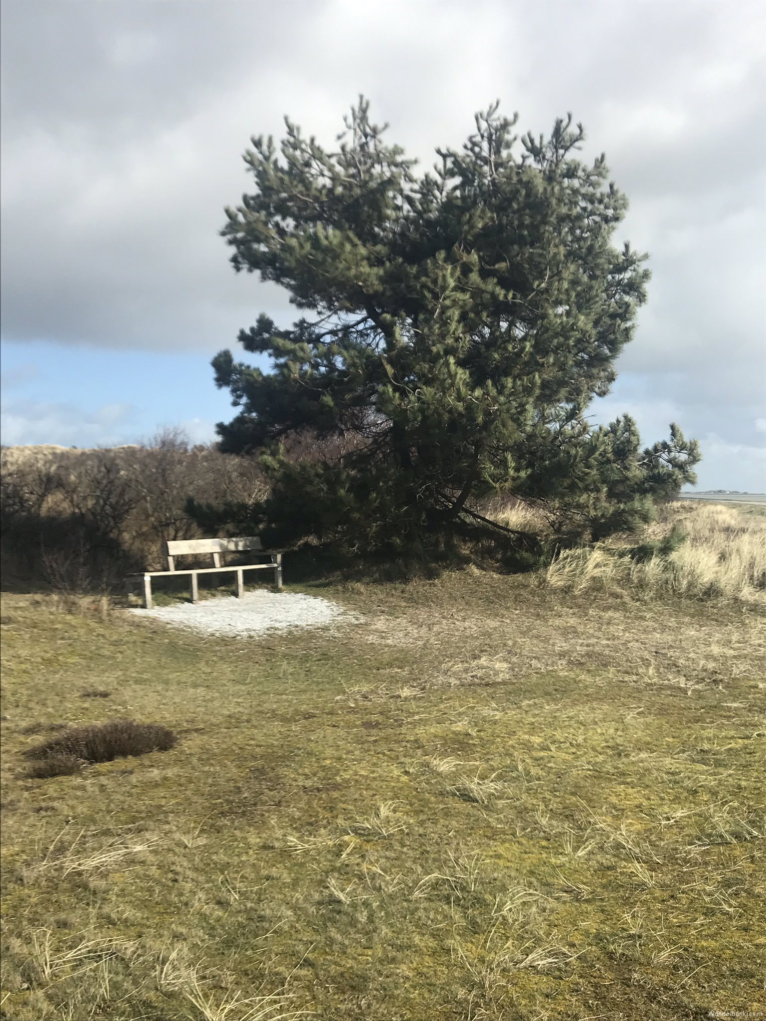 rt-joswalking-what-a-wonderful-walking-island-vlieland-hikingnet-walking benches-https-t-co-c4ckambisa