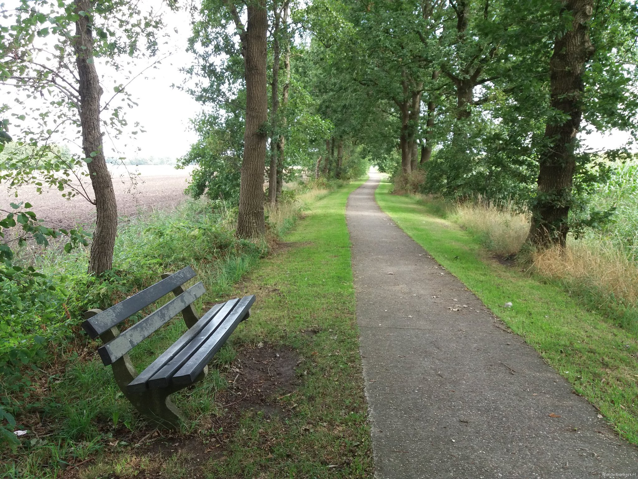 rt-walkingmetwar-walking benches-along-the-long-cycle-path-what-at-right-on-the-road-to-scharmer-https-t-co-24m5lzts8x