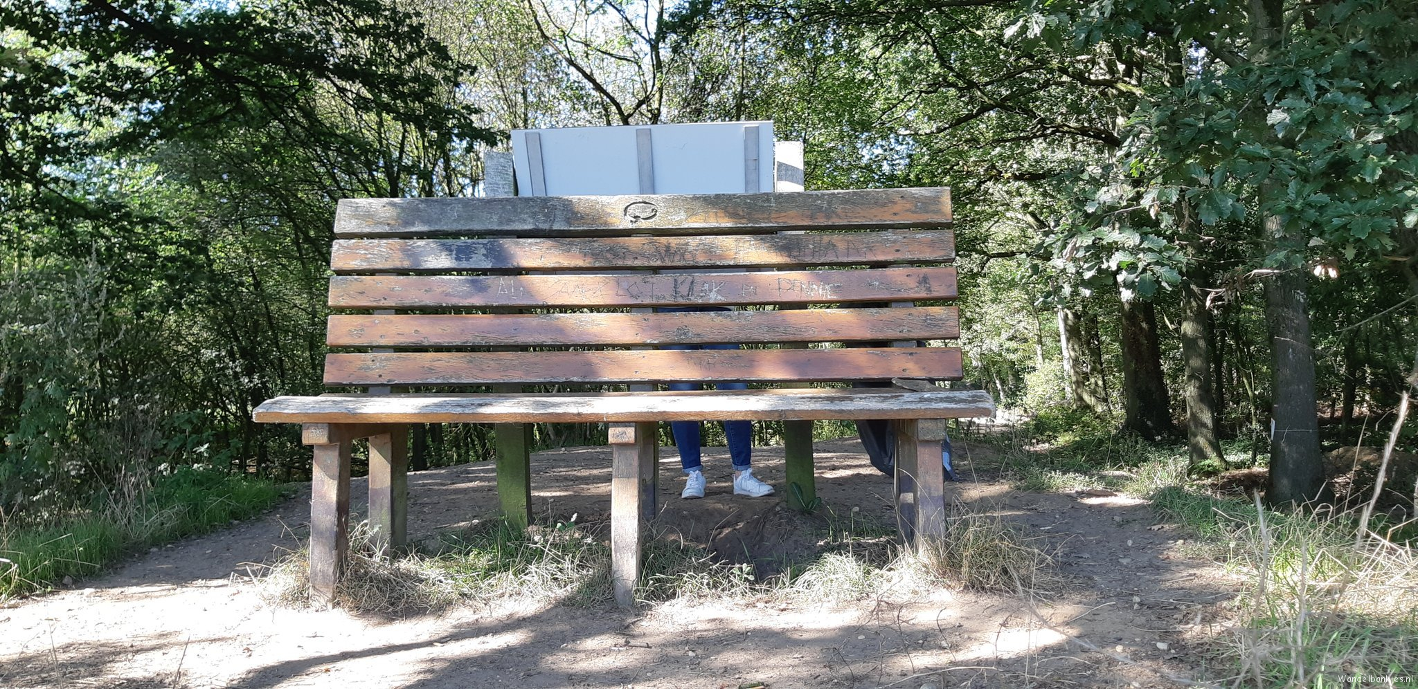 rt-nieuwenhuis7b-walking benches-bench-with-a-view-over-small-america-https-t-co-jz61vvb5l0