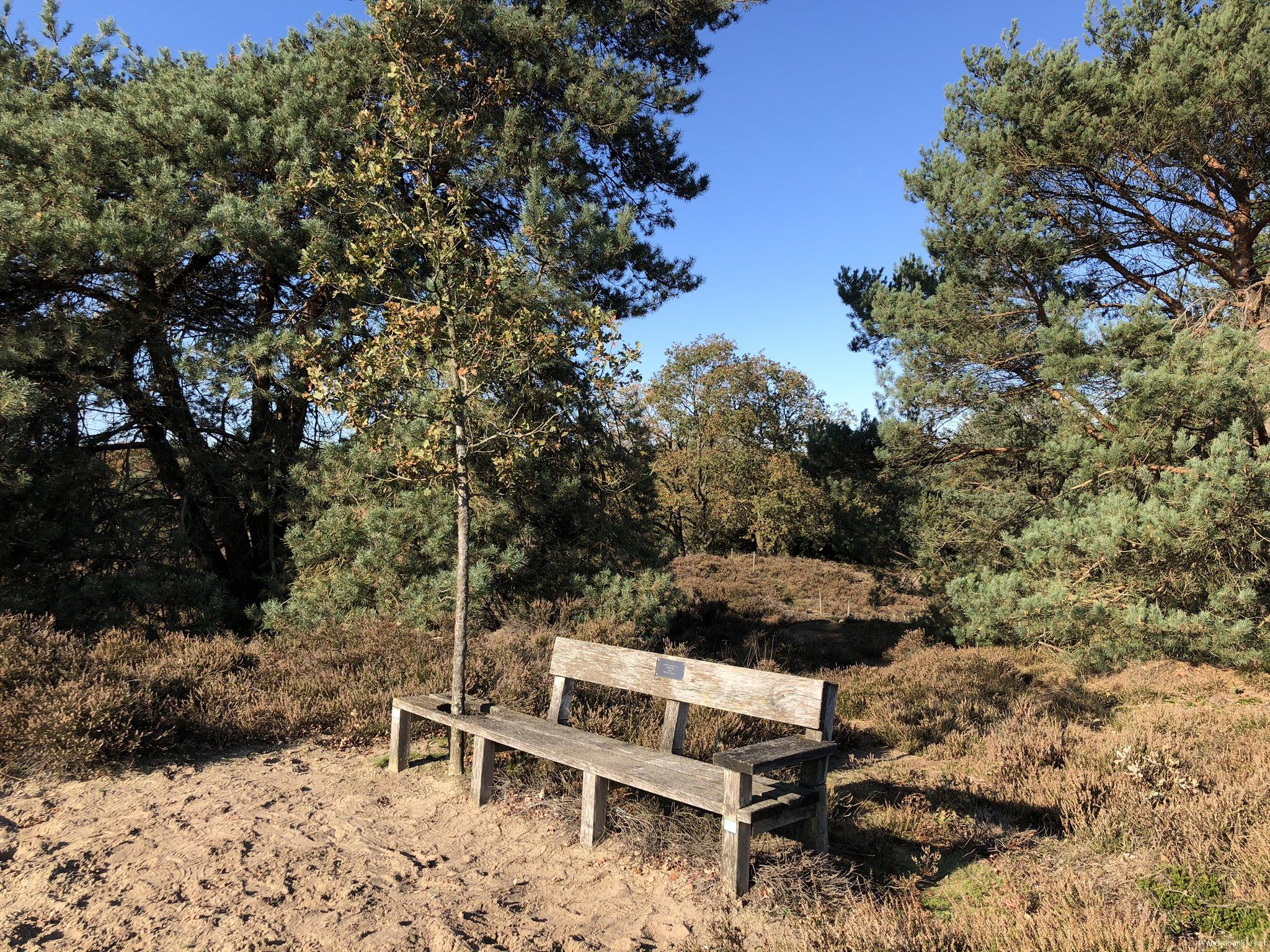 rt-gertientje-mijn-favoriete-plekje-op-terhorsterzand-wandelbankjes-walkersbenches-https-t-co-x3r5u377wr
