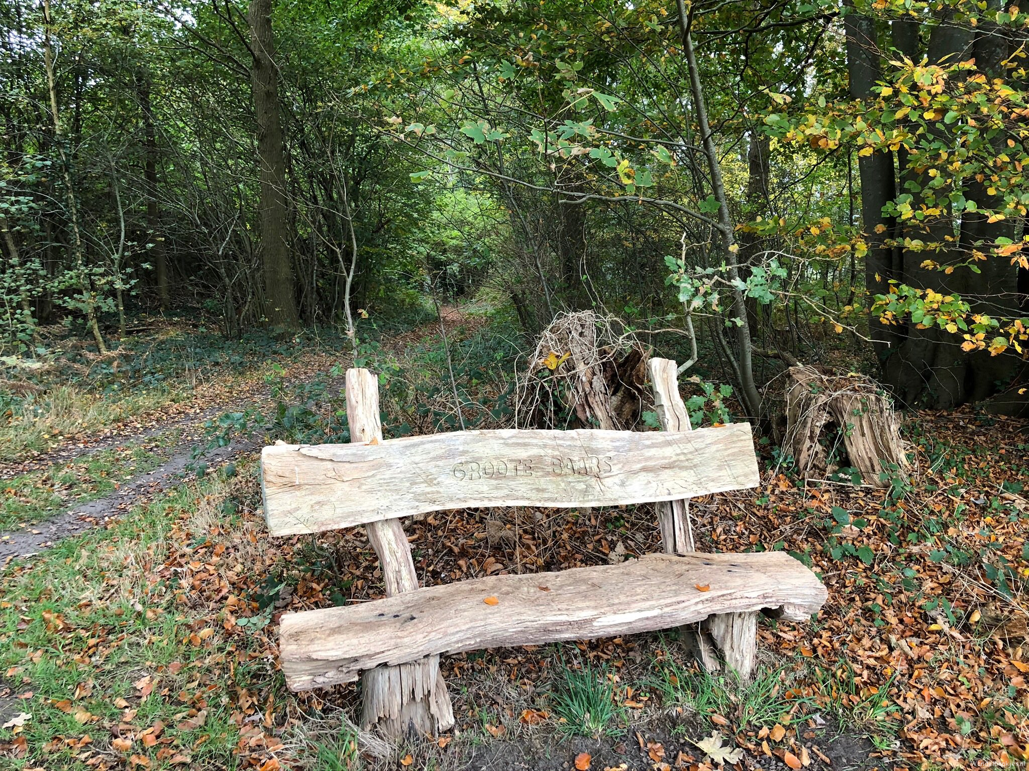 rt-gertientje-and-another-nice-walking-bench-spotted-for-walkersbenches-walking-benches-in-eesveen-https-t-co-buf9gd4wtm