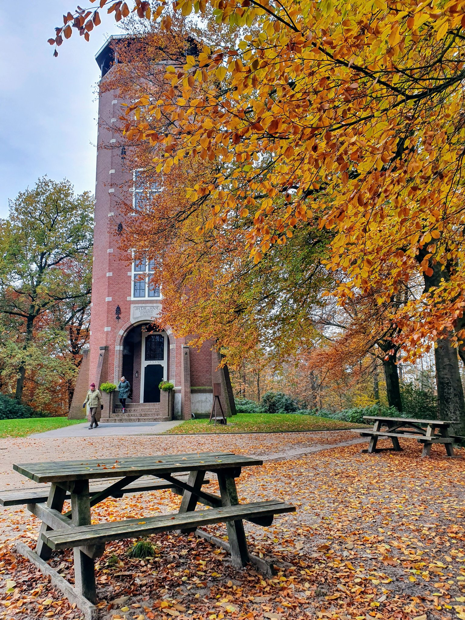rt-wolfswandelplan-koepel-in-het-luntersche-buurtbosch-wandelbankjes-https-t-co-cac5fvkrfh