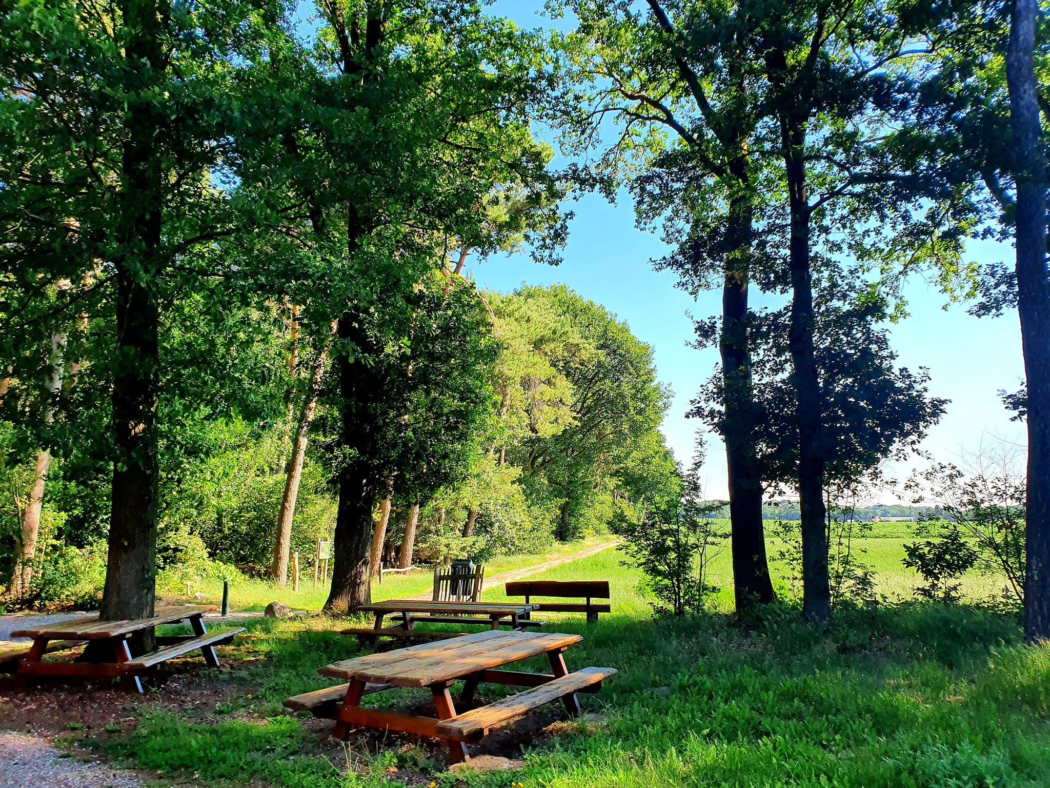 rt-wolfswandelplan-natuurbegraafplaats-bergerbos-sint-odilienberg-wandelbankjes-https-t-co-wzzcvjrirx