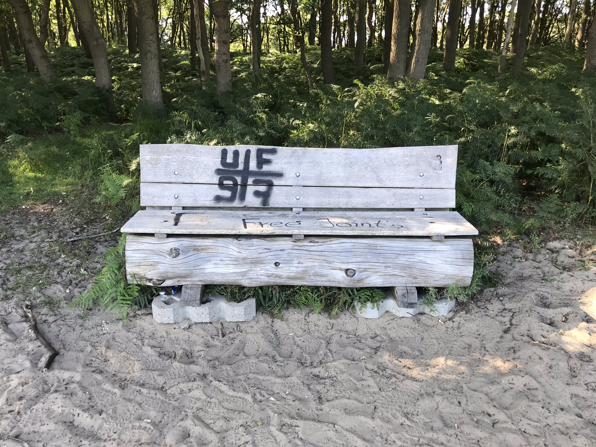 rt-boerleen-een-wandelbankje-met-grafitti-in-de-amsterdamse-waterleidingduinen-duinen-wandelbankjes-awd-https-t-co-govwrmi1n6